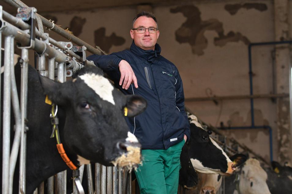 Henryk Schultz leitet die Agrargenossenschaft Reinhardtsdorf und den Regionalbauernverband.