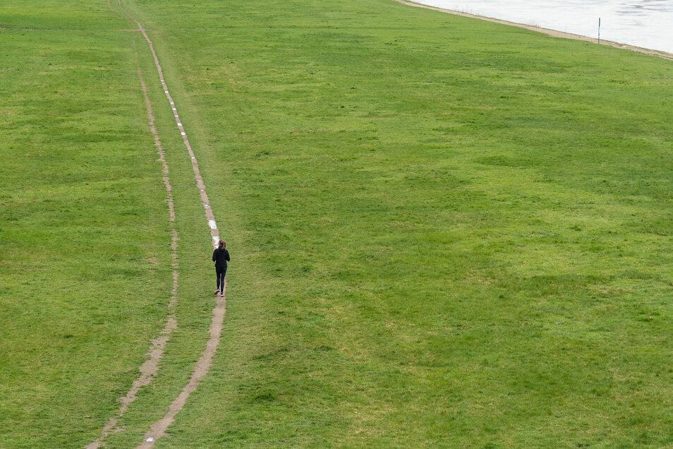Allein auf weiter Flur: Eine Joggerin läuft im April 2020 auf den Elbwiesen in Dresden. Foto: Jürgen Lösel