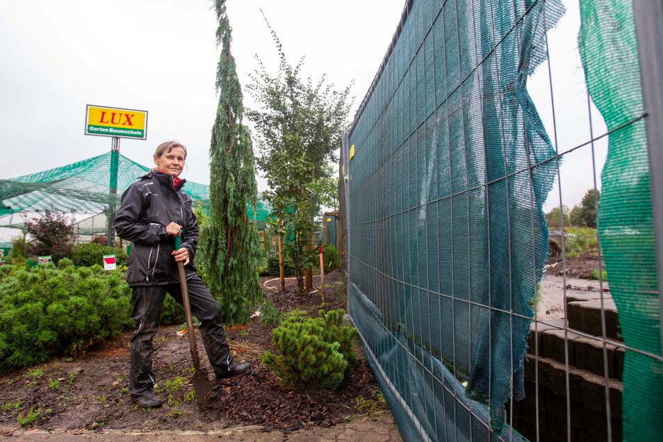 Petra Schütt von der Garten-Baumschule Lux an der Boderitzer Straße arrangiert sich mit dem Baugeschehen hinter dem Zaun.