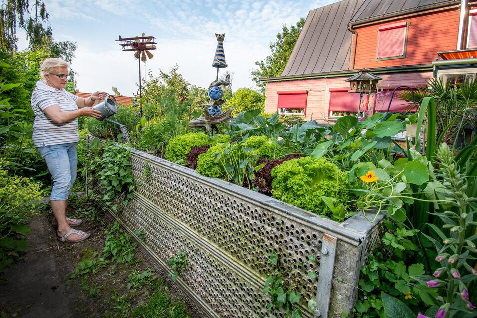 Der Garten am Haus der Stubers ist ein grünes Refugium. Um dort Gemüse anzubauen, muss sich Burgunda Stuber nicht einmal bücken. Ihr Hochbeet besteht aus nicht mehr auf Baustellen verwendbaren Gerüstteilen. Dieses Modell gibt es jetzt auch zu kaufen.