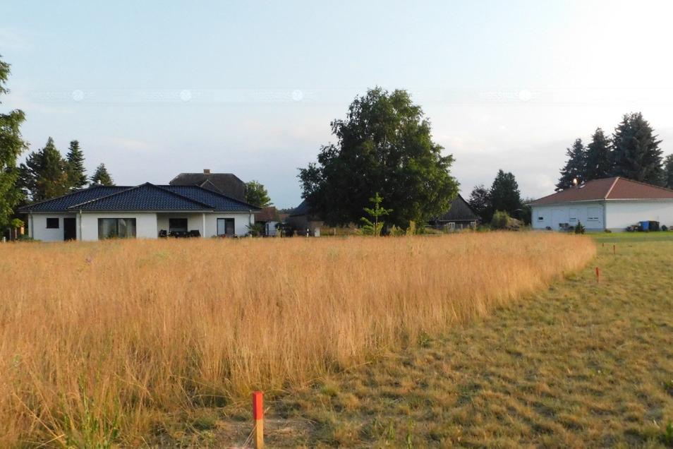 Das Baugebiet am Floßgraben in Weißkeißel lag rund 20 Jahre brach. Jetzt stehen erste Häuser, sind Flächen für weitere Eigenheim-Neubauten vorbereitet.