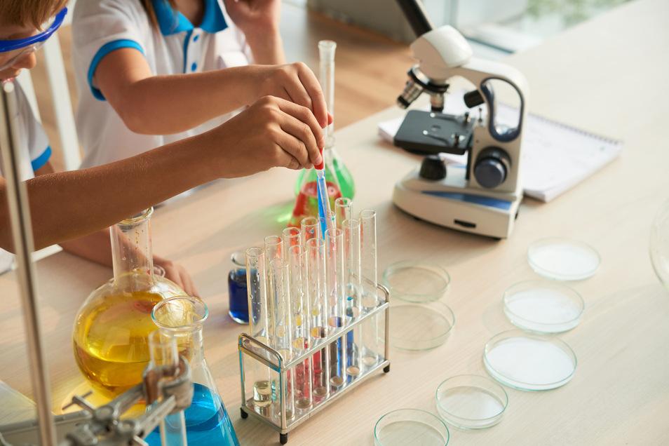 Spannende Erkenntnisse für Grundschulkids liefern Forscher-Seiten im Netz. Davon können auch pädagogische Fachkräfte und Eltern profitieren.