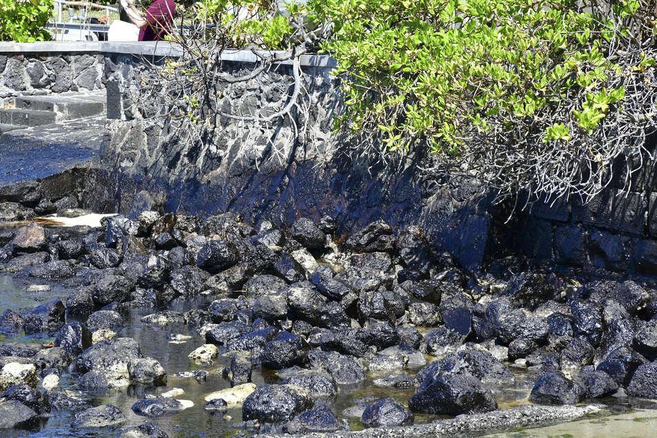 Die Felsen an der Küste von Mauritius sind mit Öl bedeckt.