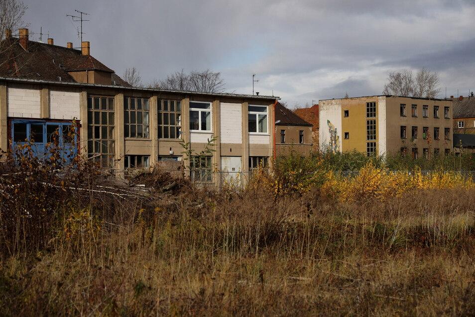 Blick auf das frühere Aropharm-Werksgelände an der Lommatzscher Straße. Die Industriebrache war einer von mehreren Orten, an denen der Angeklagte nach Wertsachen suchte, um seine Sucht zu finanzieren.