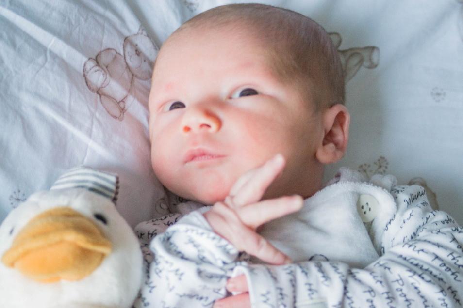 Bence, geboren am 15. Januar, Geburtsort: Dresden, Gewicht: 3.205 Gramm, Größe: 52 Zentimeter, Eltern: Ina Schlenkrich und Feri Kapi, Wohnort: Bischofswerda