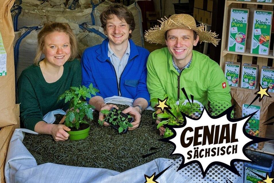 Miriam Knödler, Simon Scheffler und Torsten Mick (v.l.n.r.) machen aus Klee kleine Kraftpakete für Pflanzen.