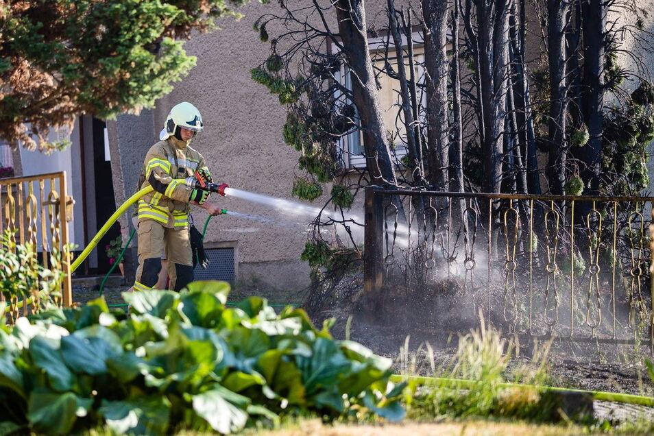 Die Feuerwehr musste am Donnerstagabend einen Brand von großen Koniferen in Lichtenberg löschen.