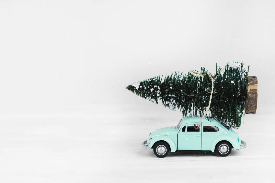 Es ist nicht ganz so leicht, den Weihnachtsbaum mit dem Auto zu transportieren. Was es zu beachten gibt, erklärt der Beitrag.
