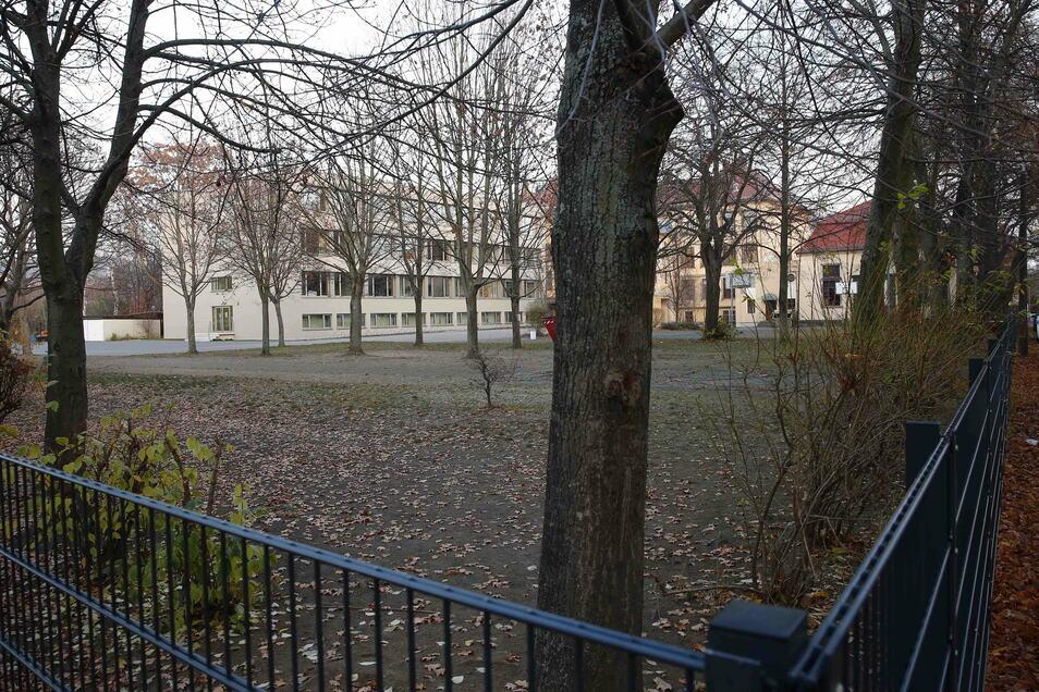 Bei den ursprünglichen Plänen war der Erhalt der großen Bäume gefährdet. Die Stadtverwaltung überarbeitete das Vorhaben noch einmal.