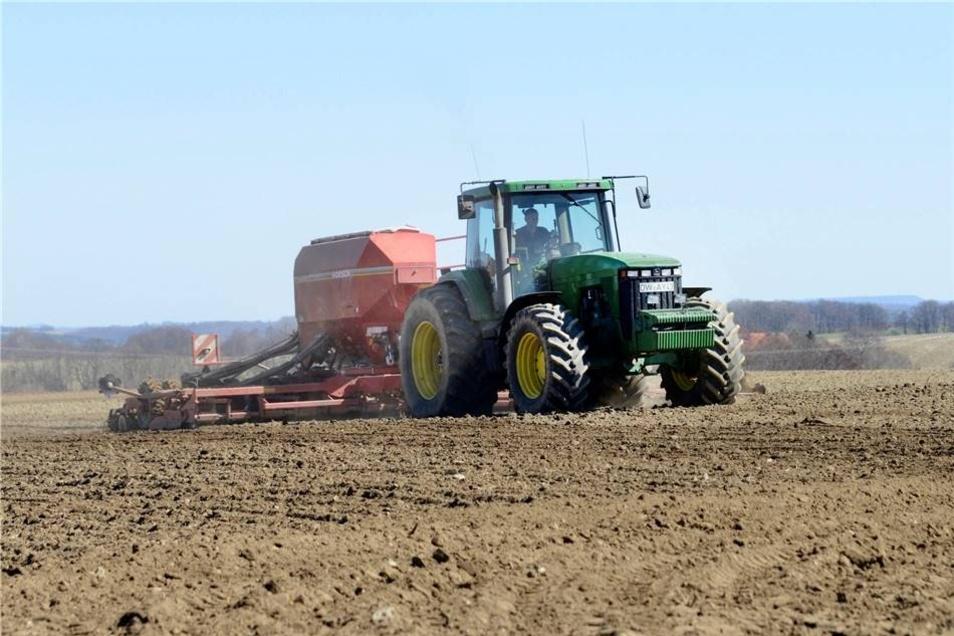 Lutz Voigt von der Agrargenossenschaft Reinholdshain drillt hier bei Oberhäslich Sommergerste.