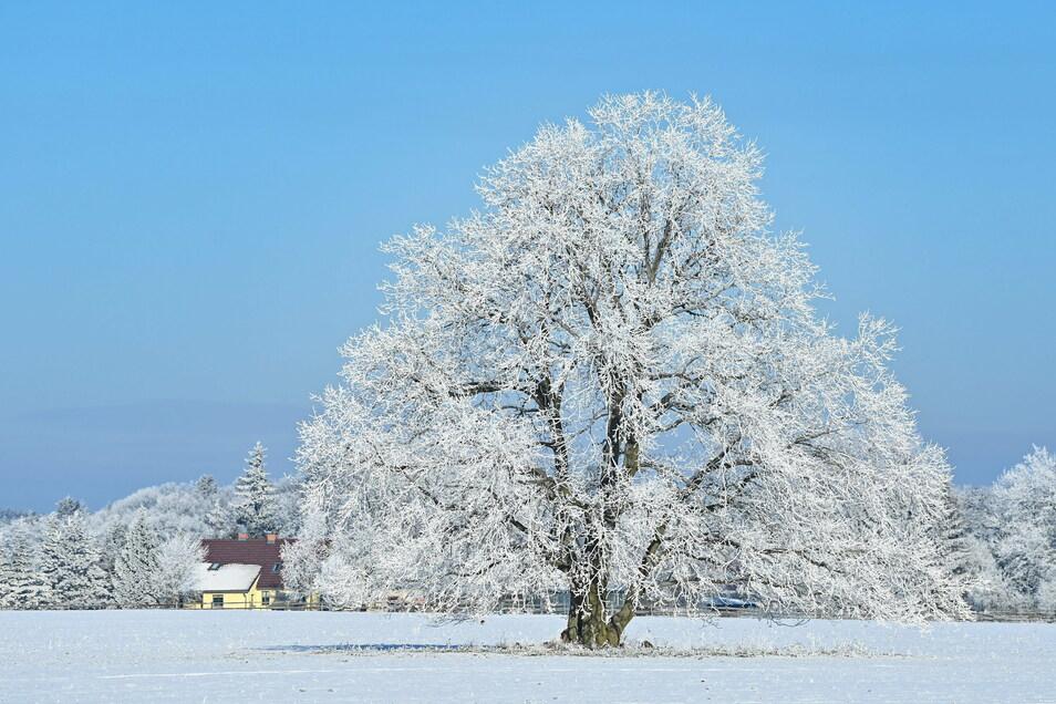 So winterlich und sonnig wie am Sonntag bleibt das Wetter leider nicht lange.
