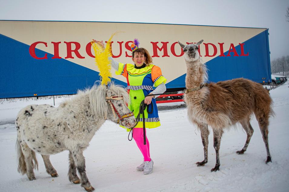 Es ist ja Faschingszeit! Zirkuschefin Carola Spindler hat sich deshalb das Kostüm übergezogen, obwohl sie im Winterquartier derzeit eigentlich andere Sorgen hat.