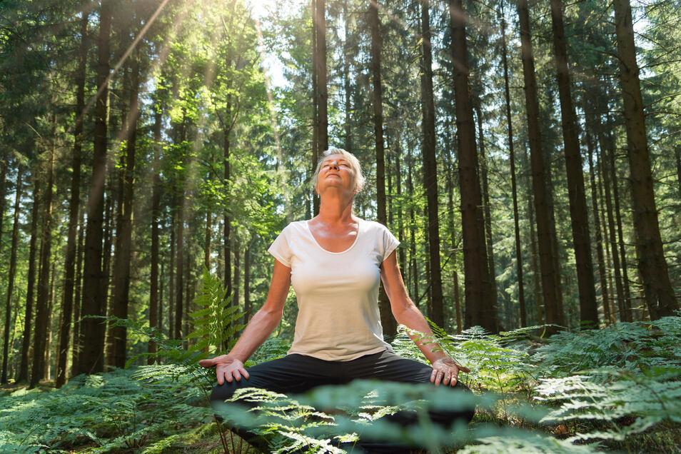 Waldbaden soll dabei helfen, das Immunsystem zu stärken.