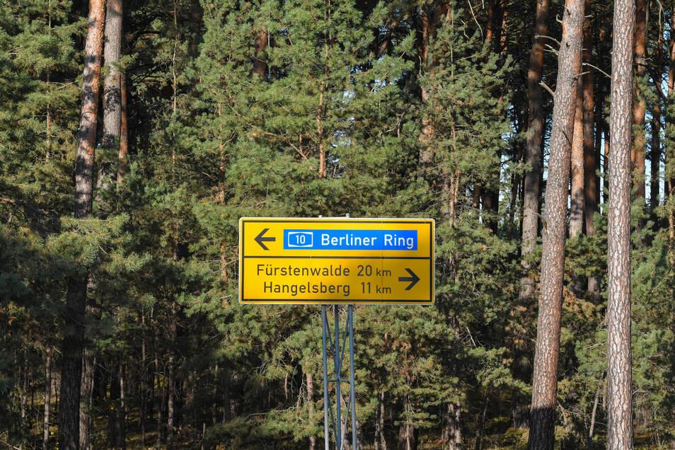 """Ein Waldgebiet grenzt an eine Straße am Güterverkehrszentrum (GVZ) Freienbrink in der Gemeinde Grünheide östlich von Berlin. In diesem Waldgebiet plant Tesla den Bau einer """"Giga-Factory""""."""