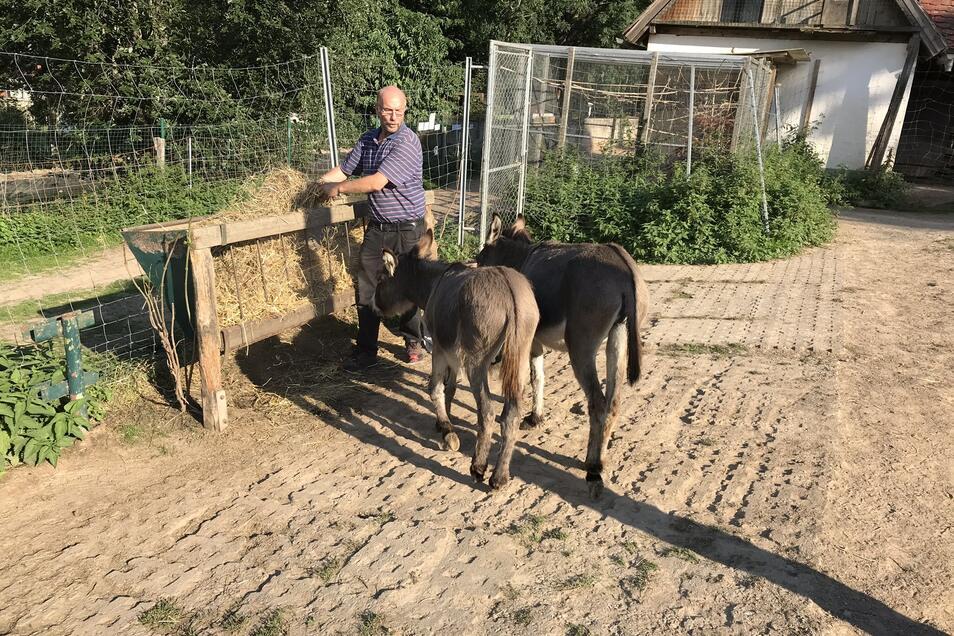 Heiko Drechsler beim Füttern der Esel.