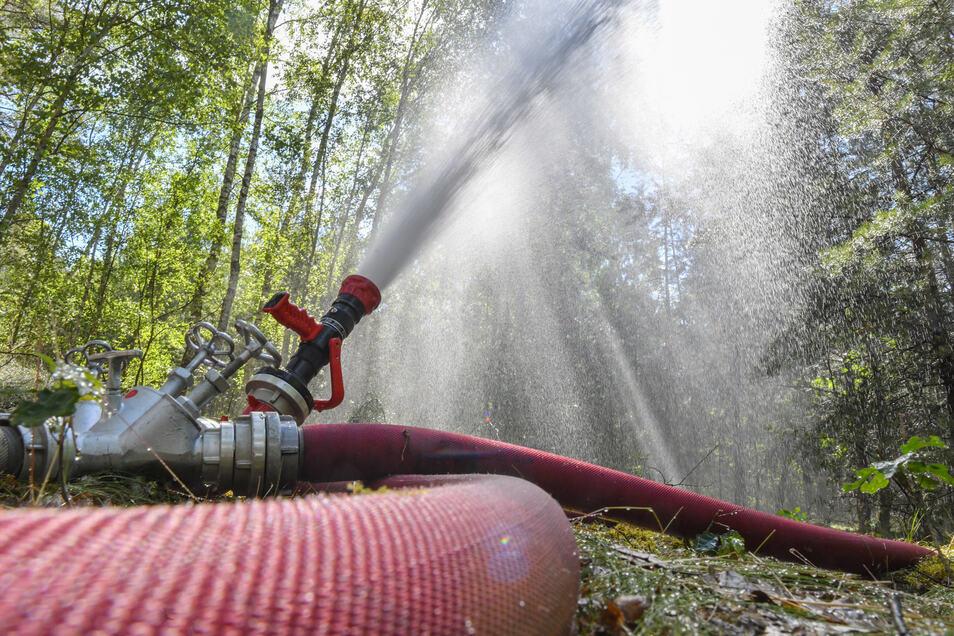 Löschwasser wird in die Bäume eines Waldes in der Lieberoser Heide gespritzt.