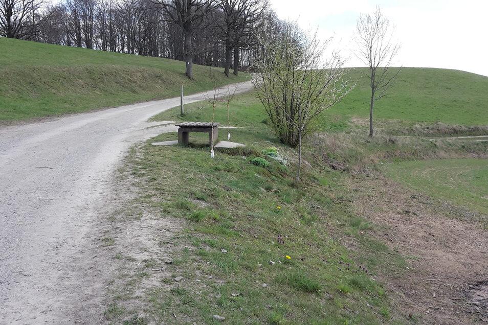 Alte Hohe Straße in Sebnitz zwischen den Wasserbehältern am Ottendorfer Weg und Hertigswalde.