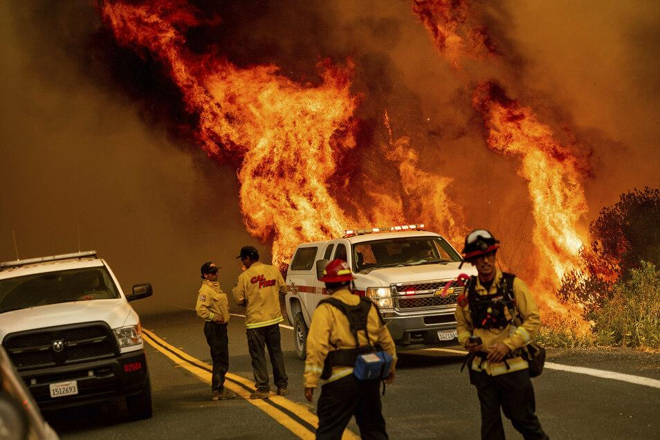 Feuerwehrkräfte versuchen das Feuer an der Butts Canyon Road unter Kontrolle zu bringen.