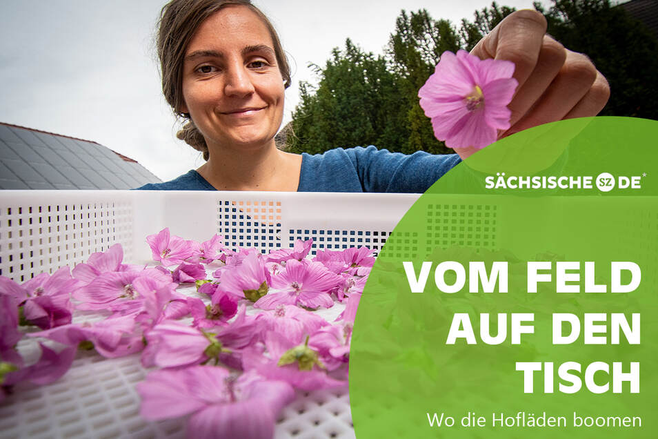 Eva Rockmann ist Inhaberin der Bio-Gärtnerei Rockmann. Sie bietet neben Gemüse aus Tee an. Dafür trocknet sie unter anderem Malven.