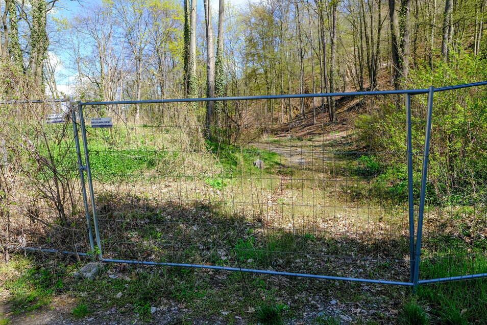 Bauzäune versperren derzeit den Zugang zu dem ehemaligen Steinbruch Kleiner Stein an der Ecke Lößnitzgrundstraße, Dorfgrund.