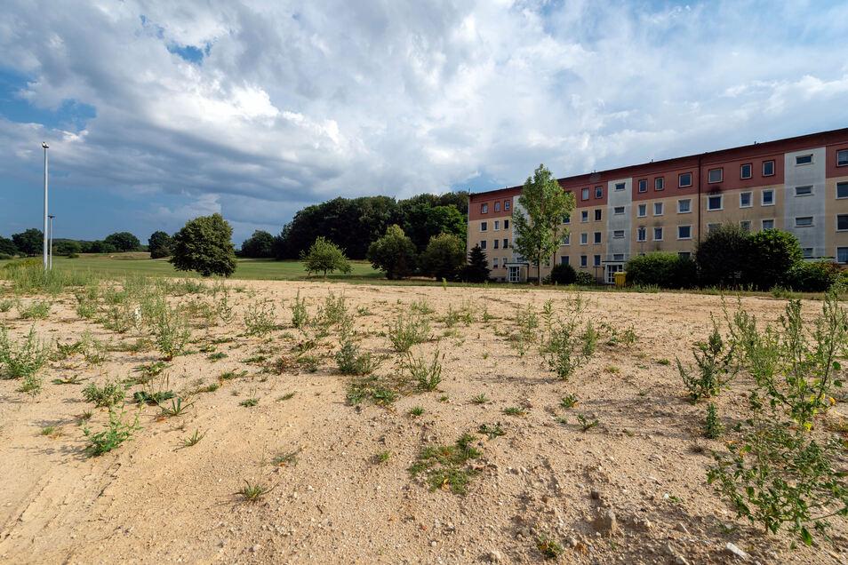 Auf dieser Fläche am Großdrebnitzer Lärchenweg soll das neue Gerätehaus errichtet werden. Zu Beginn dieses Jahres war hier ein Wohnblock abgerissen worden.