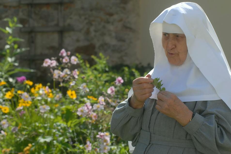 Schwester Notburga in ihrem gebliebten Kräutergarten.