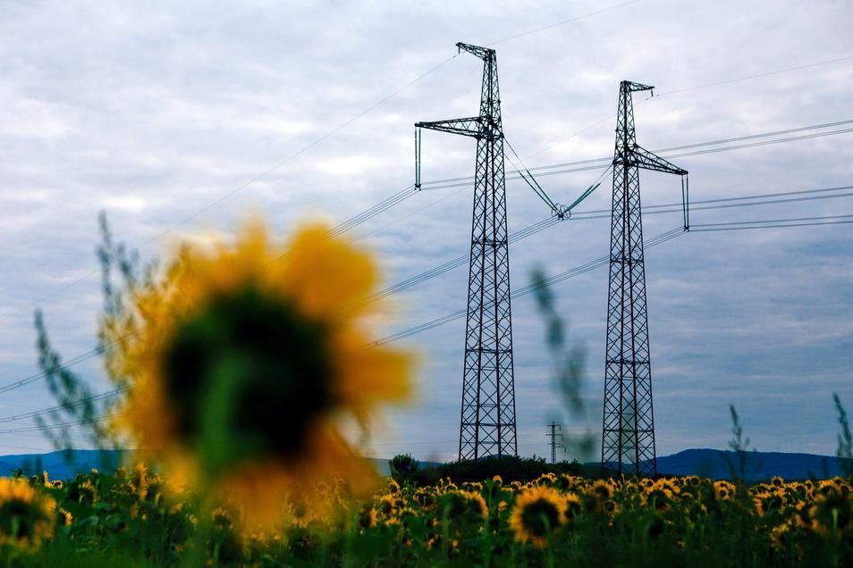 Die anziehende Wirtschaft und der relativ kühle Winter haben den Energieverbrauch in Deutschland im ersten Halbjahr 2021 steigen lassen.