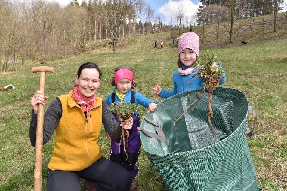 Jitka Pollakis ist die neue Koordinatorin in der Naturschutzstation Osterzgebirge. Auch ihre Töchter Eliska und Janika halfen, Lupinen zu beseitigen.