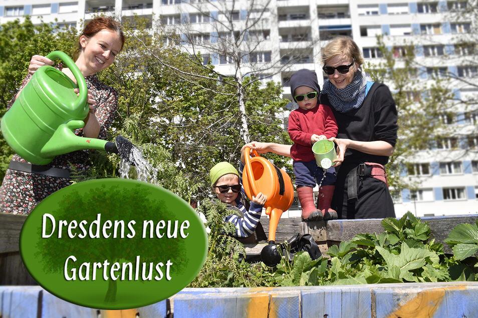 Andrea Schubert (l.) gärtnert regelmäßig am Bönischplatz. Auch Maria Tschernig zeigt ihren Söhnen Alfred und Hugo, was zu tun ist, damit bald Gemüse geerntet werden kann.