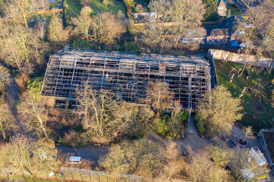 Nach dem Brand des Affenhauses im Krefelder Zoo mit vielen toten Tieren gibt es laut Ermittlern Hinweise auf sogenannte chinesische Himmelslaternen als Brandursache.