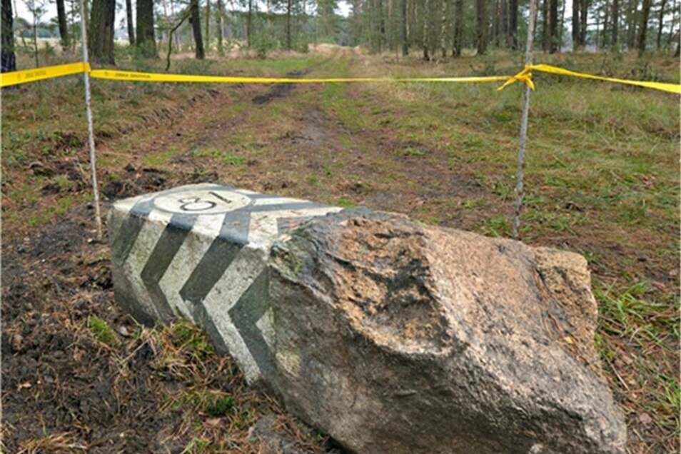 Mitten auf dem Waldweg landete der preußische Grenzstein Nummer 81.