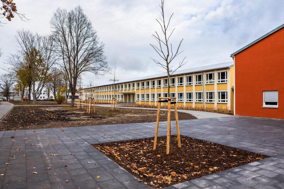 Die verwilderten Grünanlagen vor der neuen Oberschule sind sehr ansehnlich gestaltet worden.