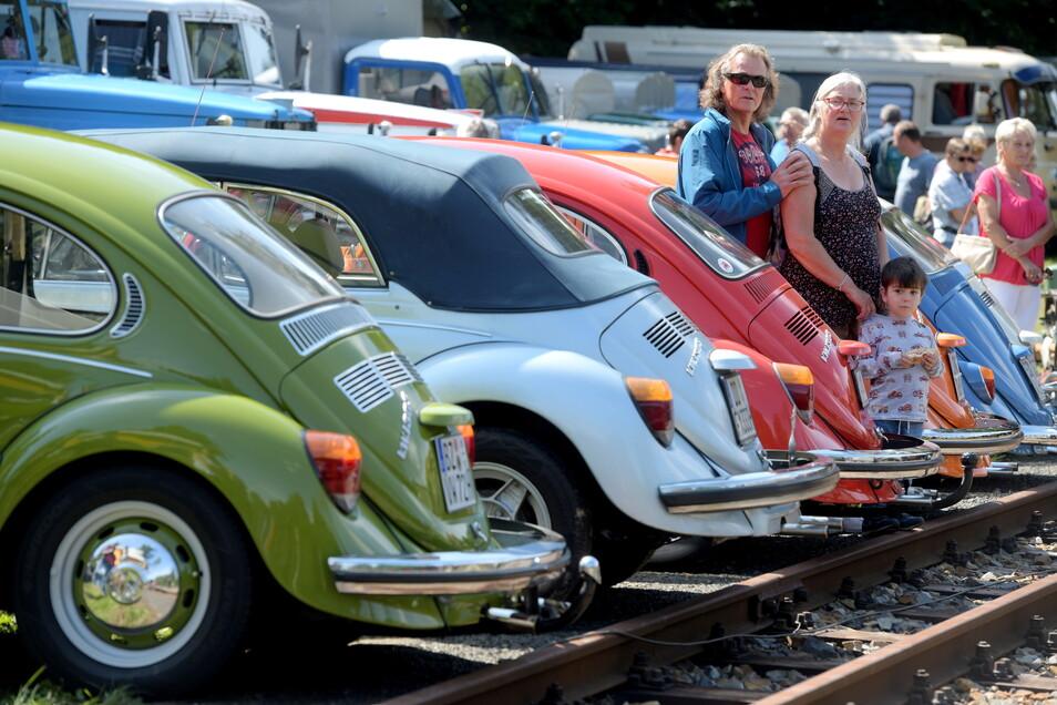 Am Gleis in Jonsdorf aufgereiht wie auf einer Perlenkette zahlreiche VW Käfer.
