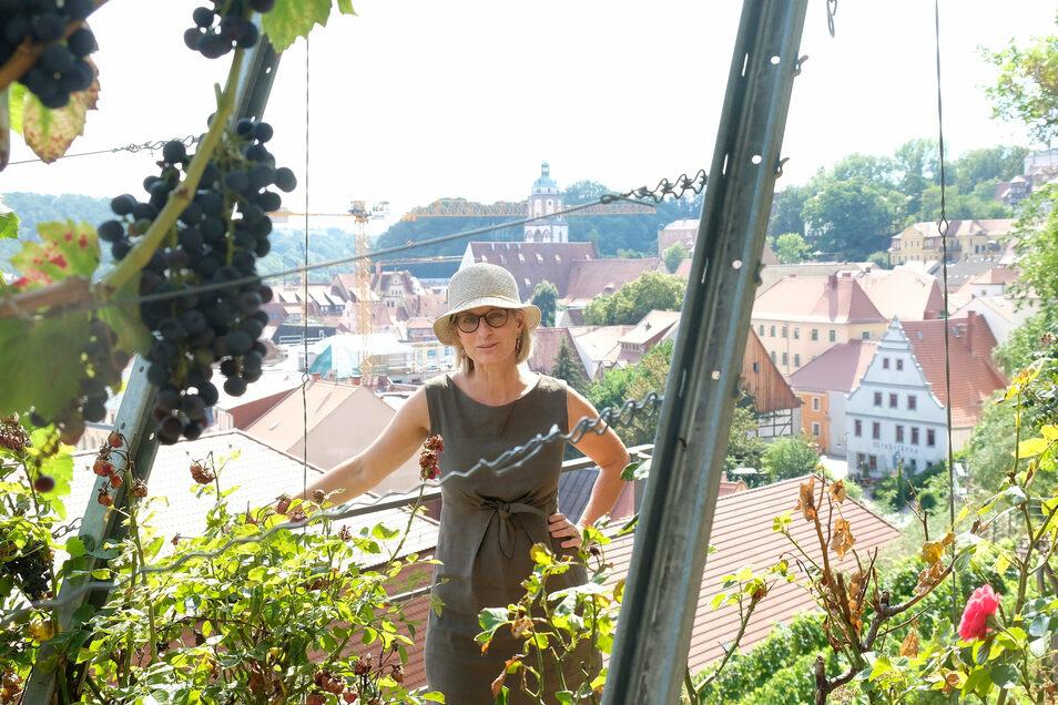 Die Sächsische Landesstiftung für Natur und Umwelt betreibt seit 2012 einen ökologischen Weinberg unterhalb der Albrechtsburg. Sprecherin Andrea Gößl erklärt, was die Stiftung in Meißen macht.