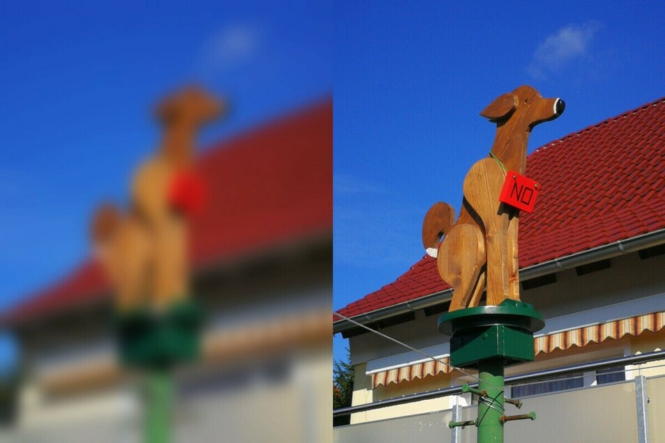 So originell wird auf das Hundeklo von Andreas Förster hingewiesen, das im Frühjahr aufgestellt werden soll.