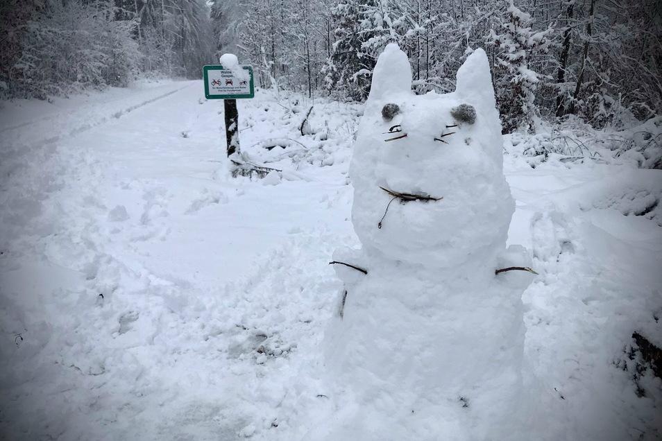 Tiere aus Schnee findet man auch in Hirschbach bei Glashütte. Im Winterwald steht diese Schneekatze, an der sich Wanderer erfreuen können.