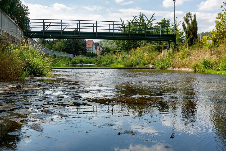 Der Pegel der Roten Weißeritz ist an dieser Stelle in Freital-Hainsberg so sehr gesunken, dass man durch den Fluss waten kann. Der Pegel an der im Bild zu sehenden Brücke zeigt nur noch zwanzig Zentimeter Wasserstand an. Etwas weiter unterhalb fließen Rote und Wilde Weißeritz zusammen. Dort beträgt der Wasserstand derzeit 38 Zentimeter. Normal wären 52 Zentimeter.