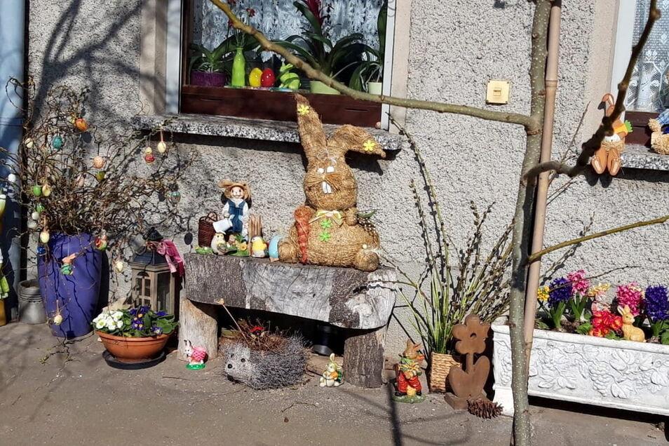 Petra Engelmann hat mit Enkel Robin an der Zottewitzer Windmühle diese Hasenparade aufgestellt.