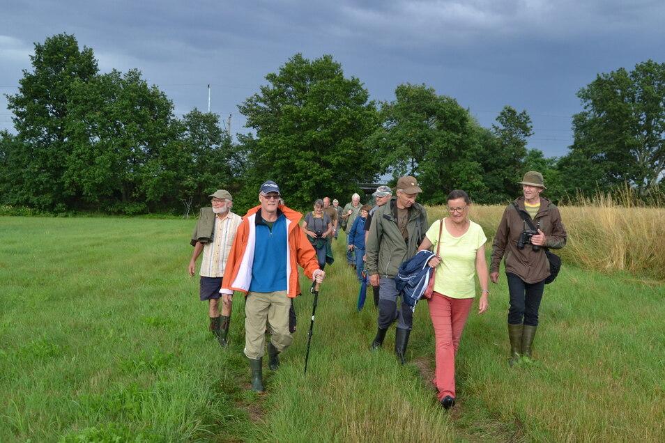 Es geht endlich wieder los: Naturschützer Alf Terpe (li.) mit Exkursionsteilnehmern auf dem Weg zu den Elligastwiesen bei Nasseböhla.