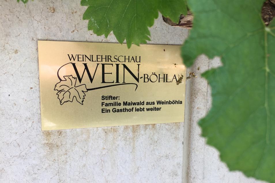 Die Terrasse des Restaurants ist mit Wein bepflanzt worden. Einige der Stöcke sind gespendet worden und die Nonno Rosa nun Teil der Weinlehrschau Weinböhla.