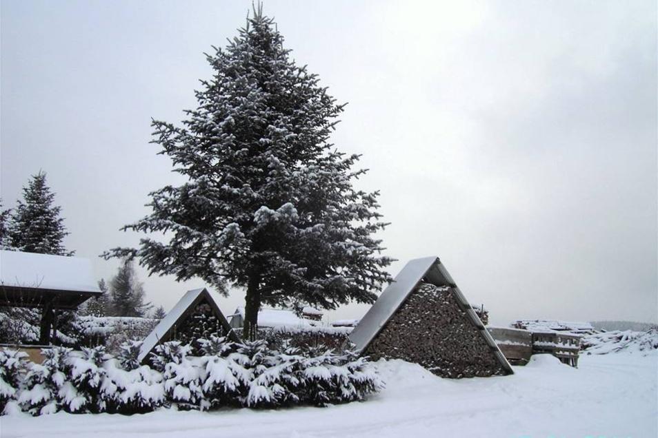 Winter in und um Steinigtwolmsdorf: Holzstilleben.