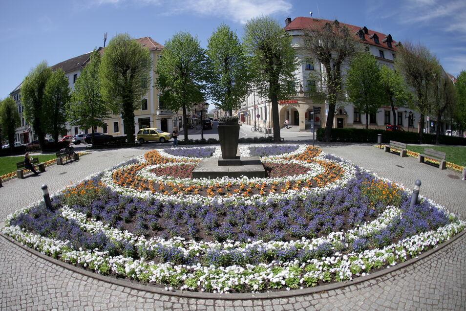 Neue Frühjahrsblumen auf den Rabatten an der Pirnaer Grohmannstraße: Schon im Sommer könnte es mit der Farbenpracht vorbei sein, weil die Stadt sparen muss.