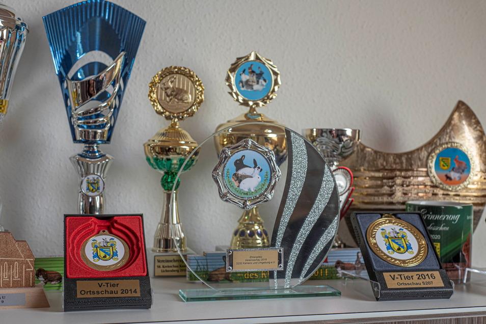 Henry Schinke ist seit 23 Jahren Chef des Rassekaninchenzüchtervereines Kamenz & Umgebung. Er hat bereits über 200 Preise und Pokale gewonnen.
