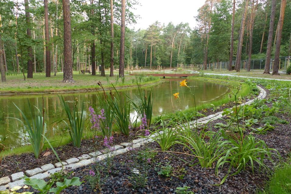 Auf dem denkmalgeschützten Heidefriedhof wurde ein neuer Teich mit Grabzonen direkt an der Uferböschung angelegt.