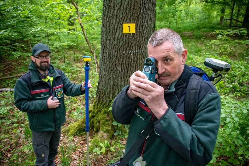 Mit einem Spiegelrelaskop erfasst Landesinventurleiter Michael Schmid (rechts) verschiedene Parameter von Bäumen. Sein Kollege Timmy Schulze hilft ihm dabei.