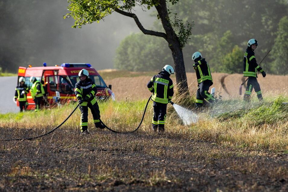 Zwischen Schmölln und Putzkau im Kreis Bautzen hat am Sonnabend ein Feld gebrannt.