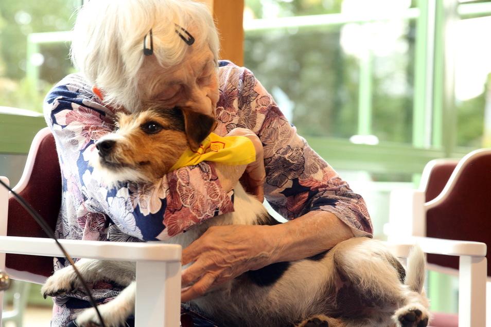 Aller 14 Tage bekommen die Bewohner des ASB-Pflegeheimes in Königsbrück Besuch von zwei Hunden. Dabei gibt es oft berührende Momente wie diesen.