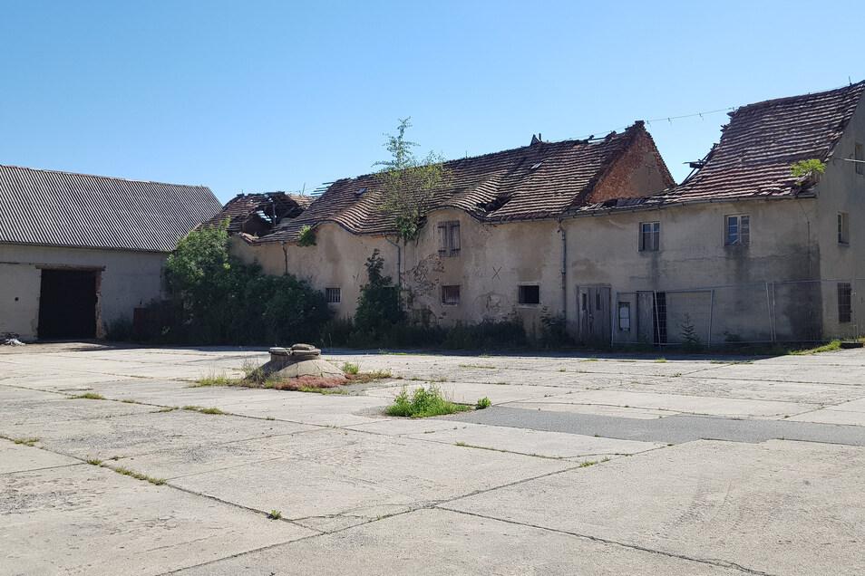 Die Guts-Gebäude gerade aus alter Zeit sind allerdings inzwischen arg beschädigt, die Dächer stürzen ein.