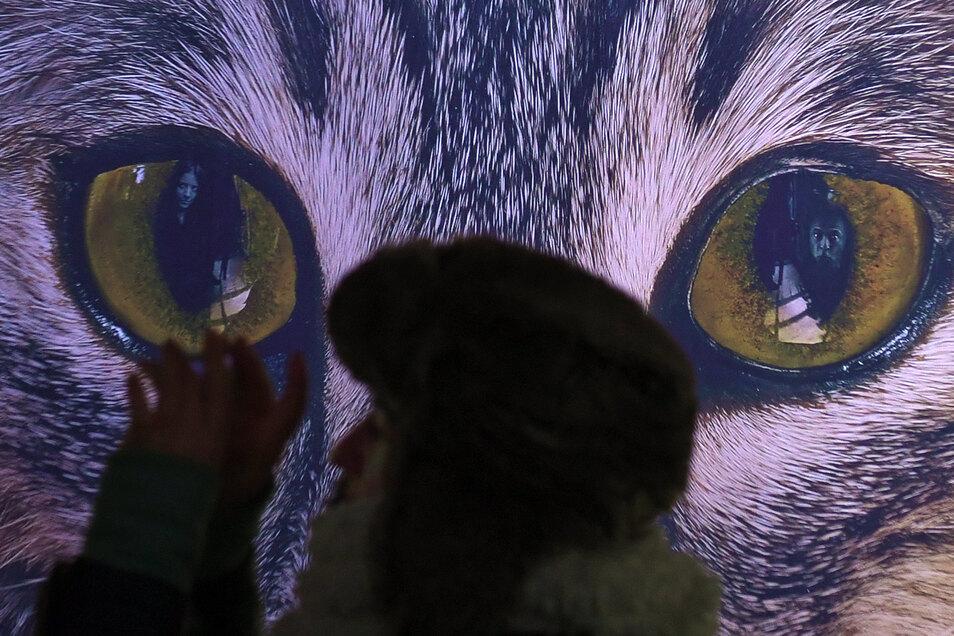 Der Künstler Yadegar Asisi hat sich in seinem neuen 360-Grad-Panorama im Panometer im Auge einer Katze (r) verewigt.