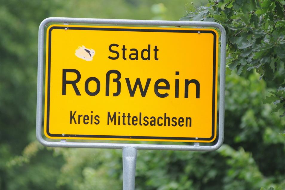 Ehrenamtliche aus der Stadt Roßwein wollen auch 2021 Ideen zusammentragen, wie die Stadt attraktiver werden kann: für Familien, für Senioren oder für Kultur- und Sportbegeisterte.
